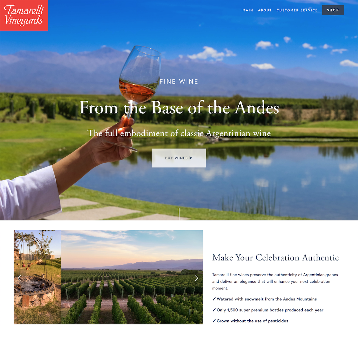 Tamarelli Vineyards - As one of Argentina's premium wine producers, Tamarelli Vineyards® hired MOR Creative with the goal to grow business without diverting focus from their craft. We clarified Tamarelli's marketing messages, created a Squarespace Website for their brand, and set up a series of automated emails that on-board new potential customers to the brand.