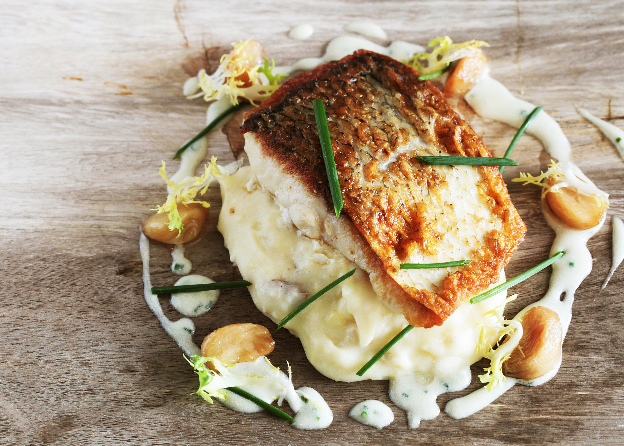 Pan seared sea bass on top of mashed potatoes with a dill sauce, roasted garlic and chive