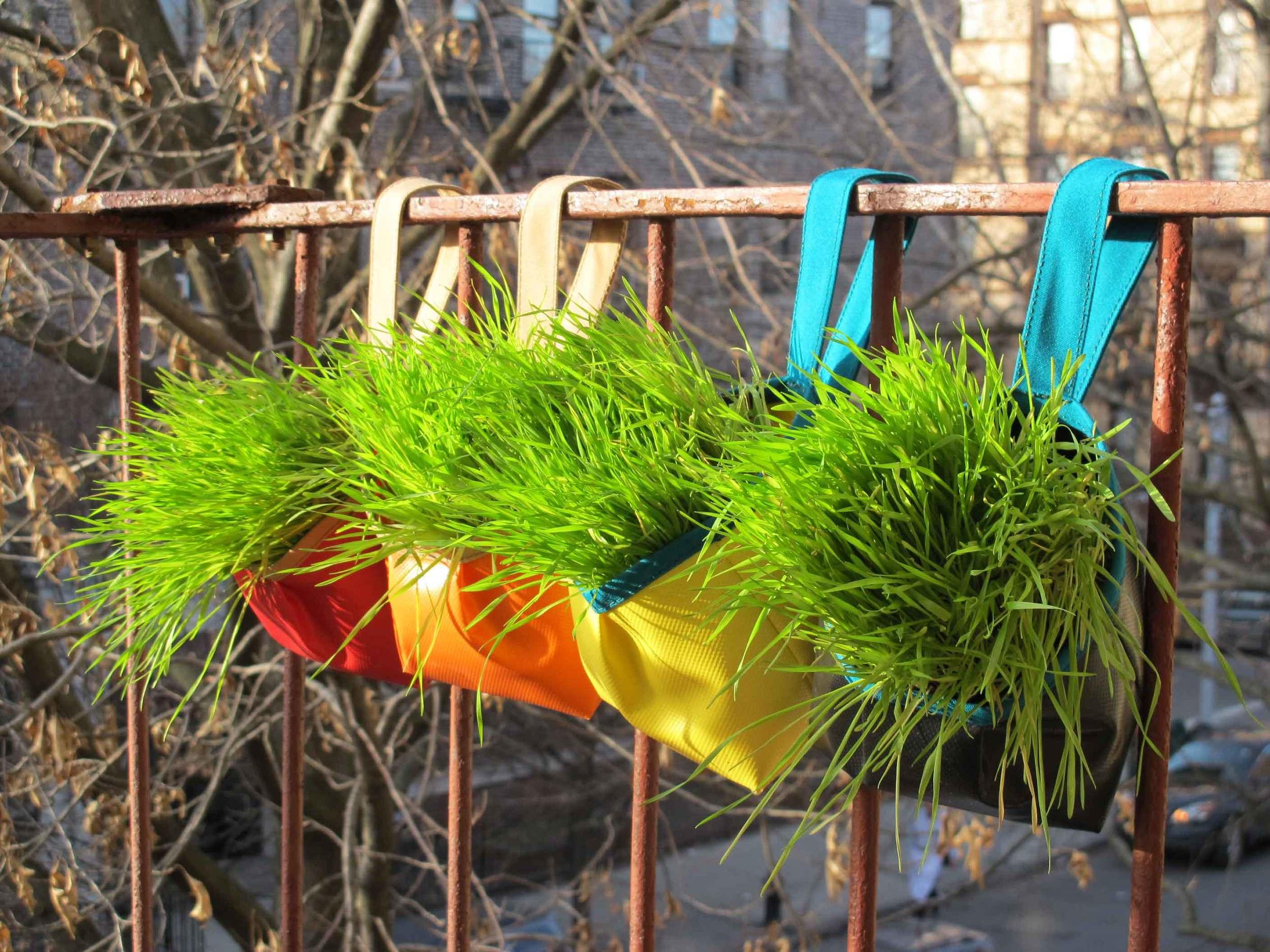 garden totes for urban landscapes