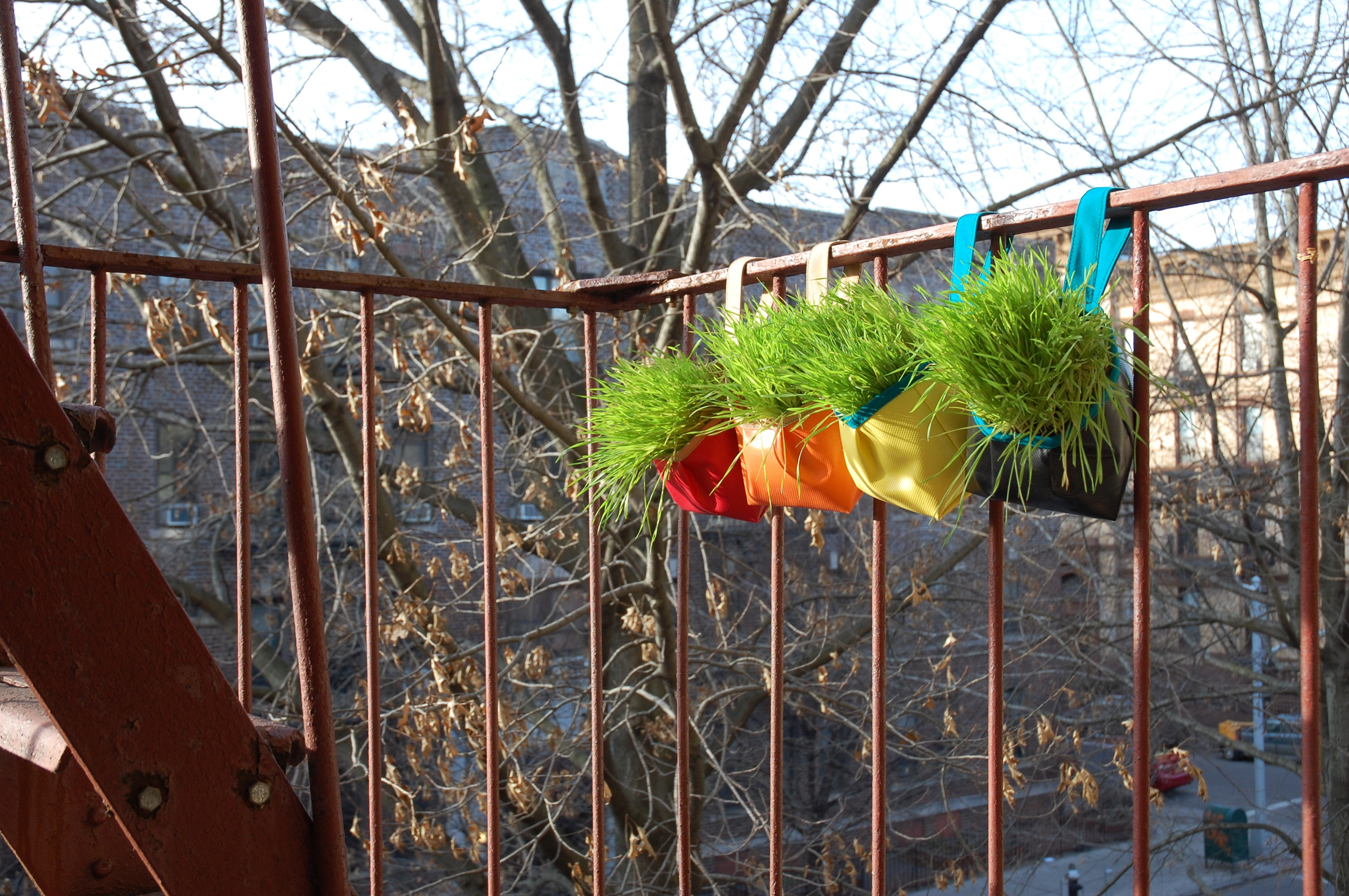 Colorful garden tote planters brightening up the fire escape in early spring!
