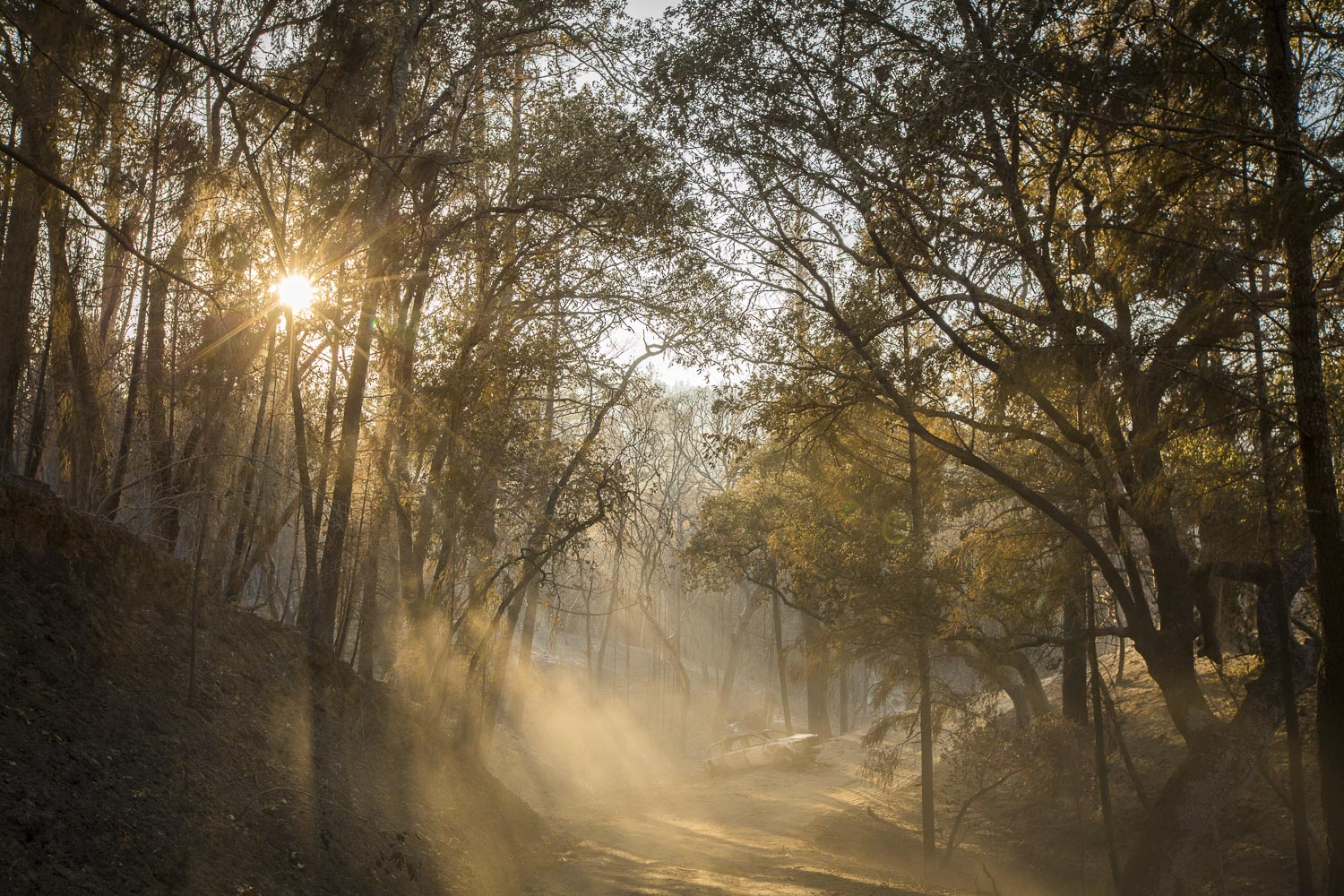 A burned car sits on the road to the Monroe family property, destroyed by wildfire in a secluded neighborhood off Tomki Road Oct. 15, 2017 in Redwood Valley, CA.
