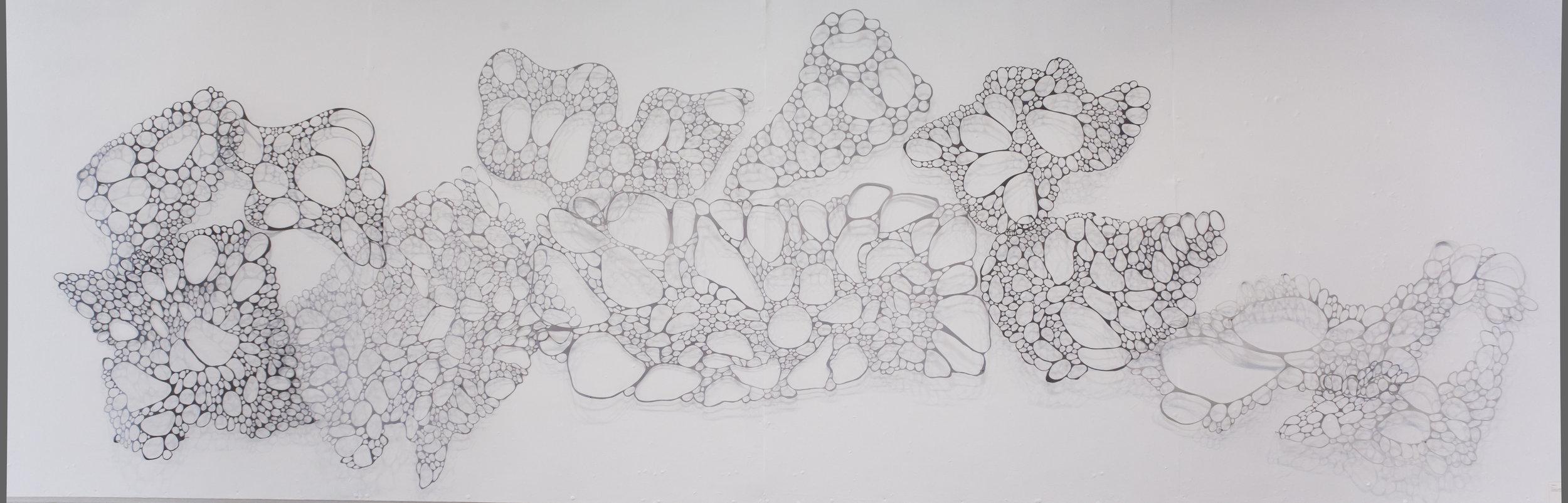Porous  2015 Approx. 5' x 15'