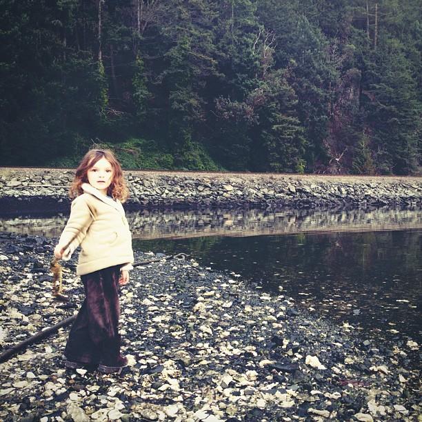 cedar by water.jpg