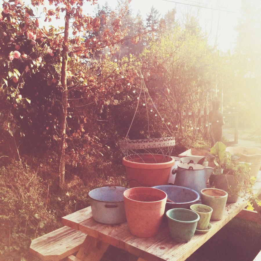 a few of my pots*