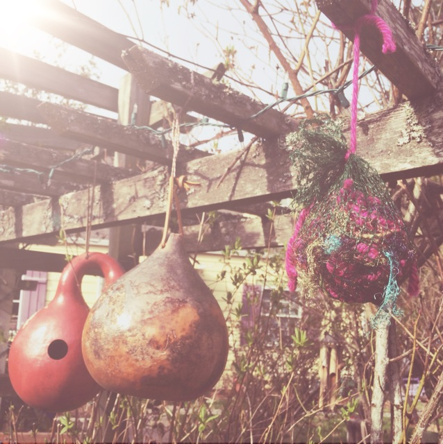 yarn for the birdies*