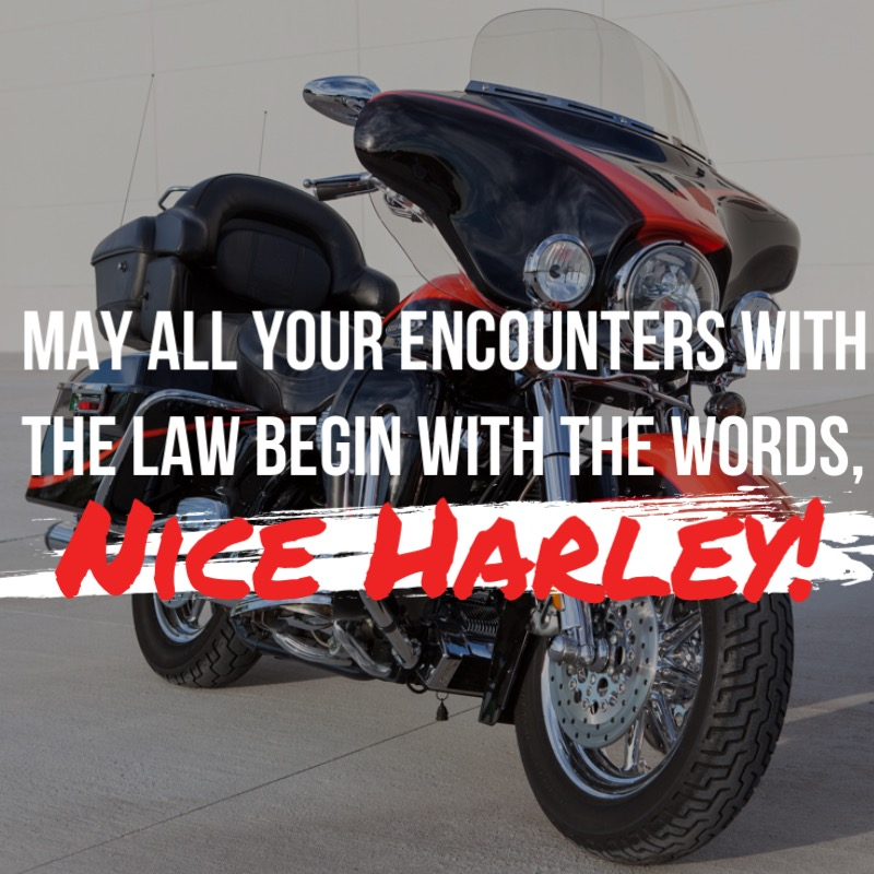 Nice Harley