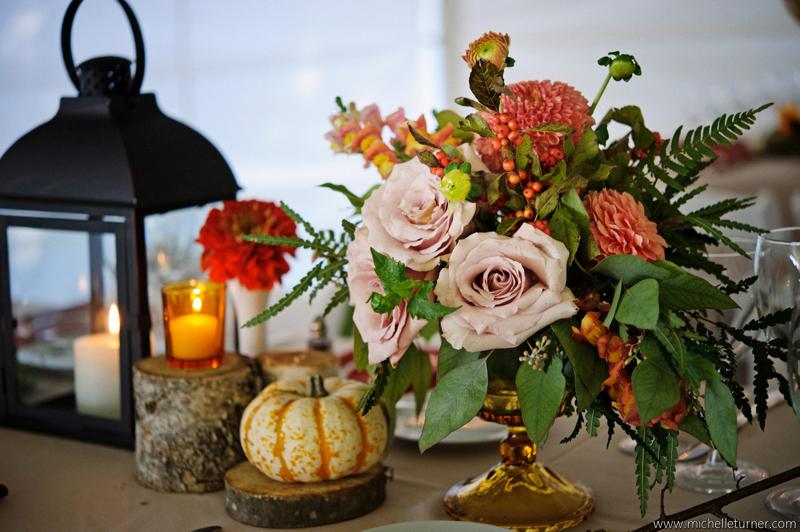 Maine Seasons Events Flora Fauna Photo- Michelle Turner.jpg