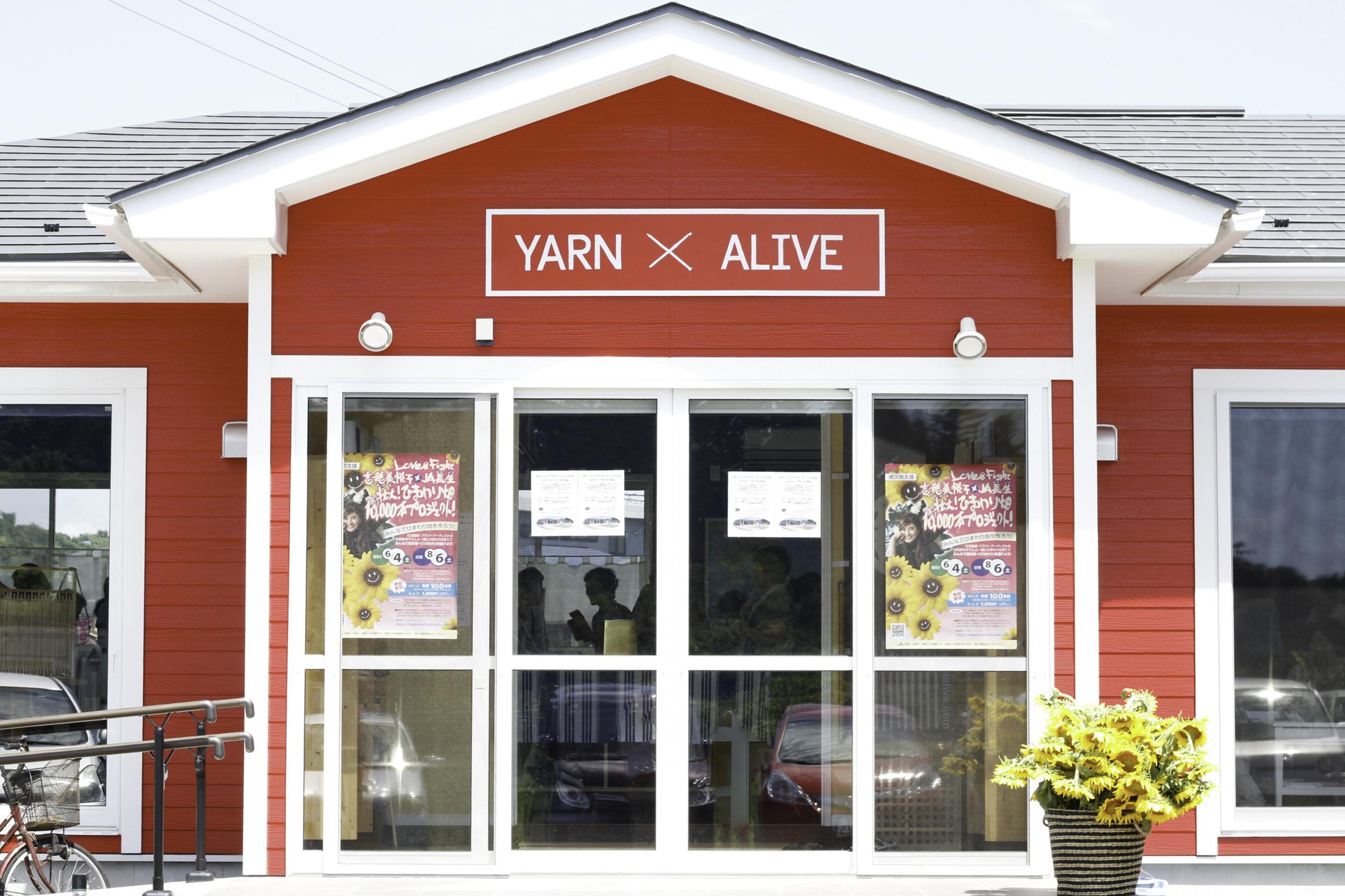 皆さんようこそ〜!Welcome to Yarn Alive House!!