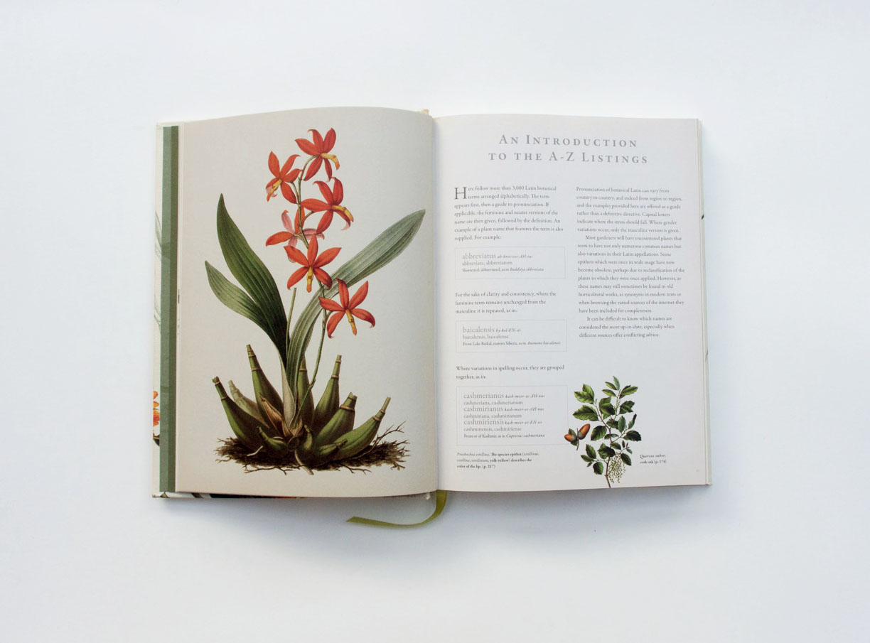 Latin for Gardeners 3.jpg