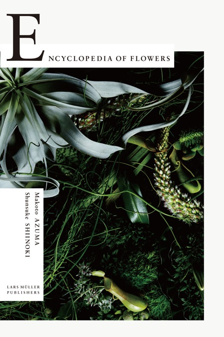 Encyclopedia_of_flowers_cover.jpg