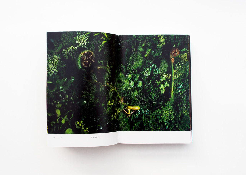 Encyclopedia of Flowers_Whole2.jpg
