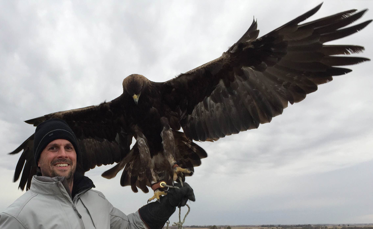Revere La Noue on location directing OVERLAND with Miles the eagle one day before receiving an unexpected talon through the wrist inspiring him to remember what wild means.