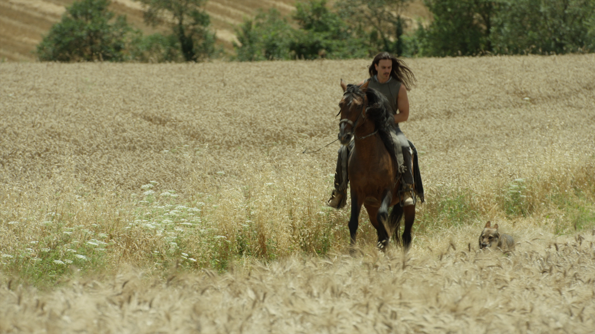 On location shooting OVERLAND in Abruzzo, Italy with a falconer, his horse, and his wolf.