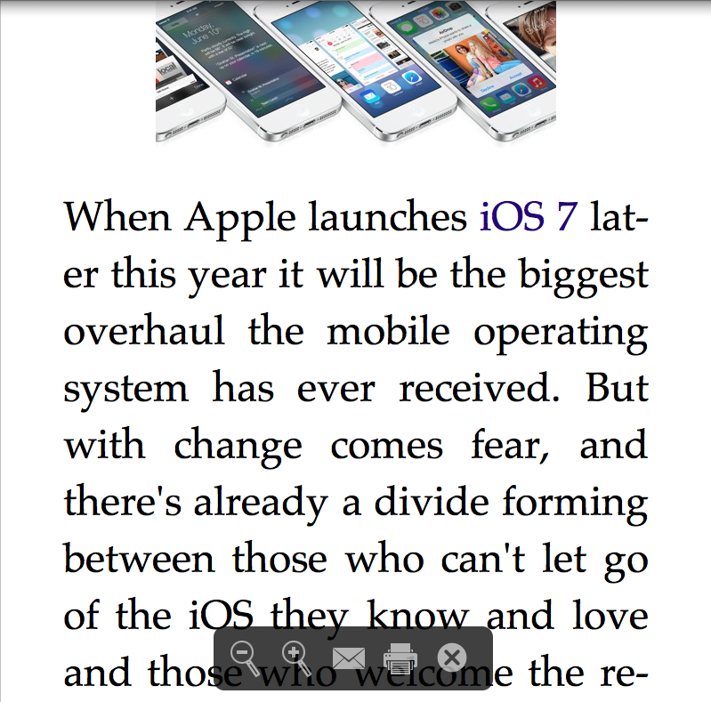Screen shot of the Reader mode showing the control bar at the bottom of the window.