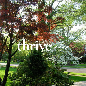 thrive2.jpg