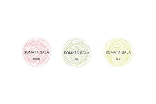 25_somata.jpg