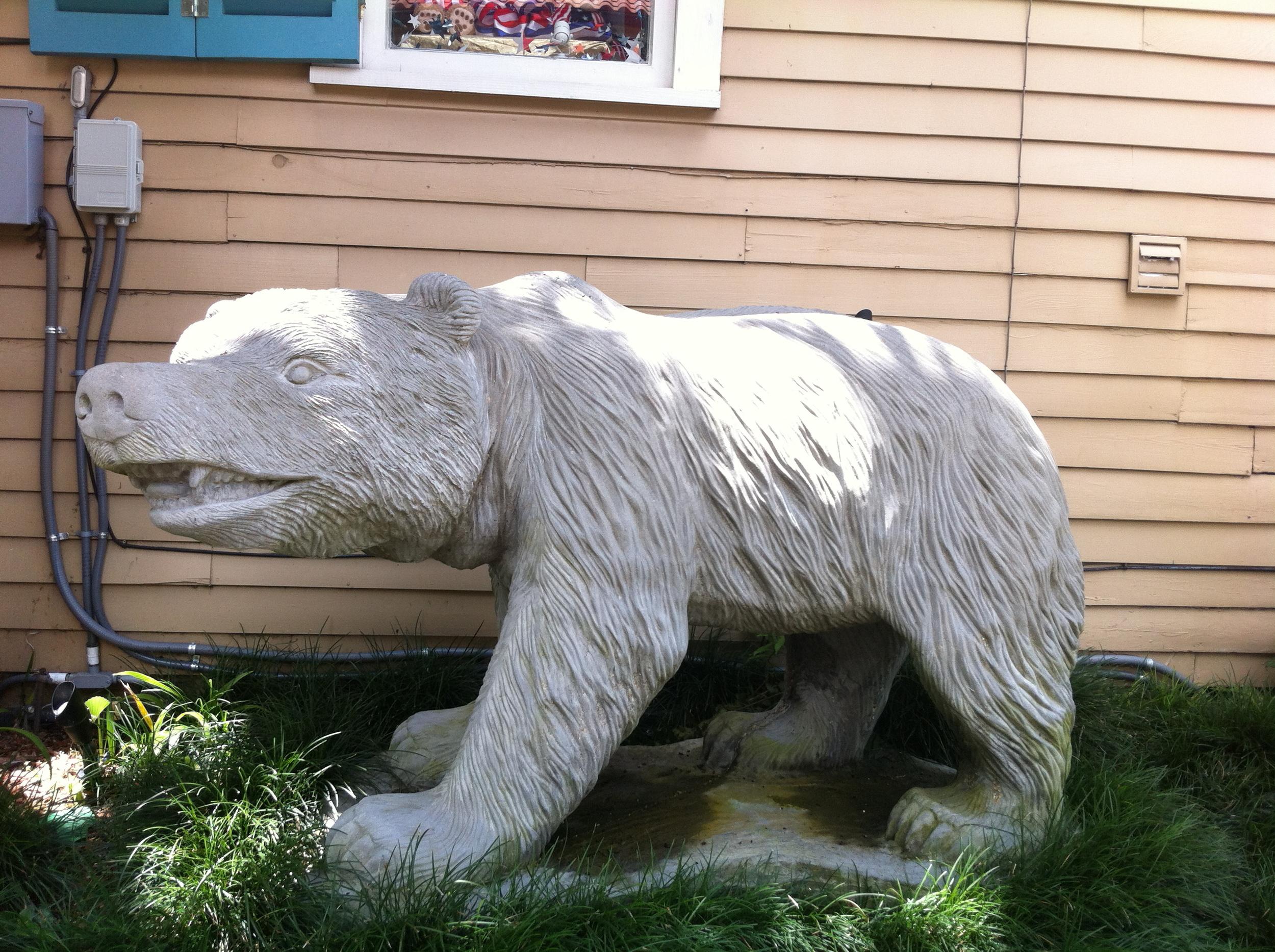 Big Lucky Bear