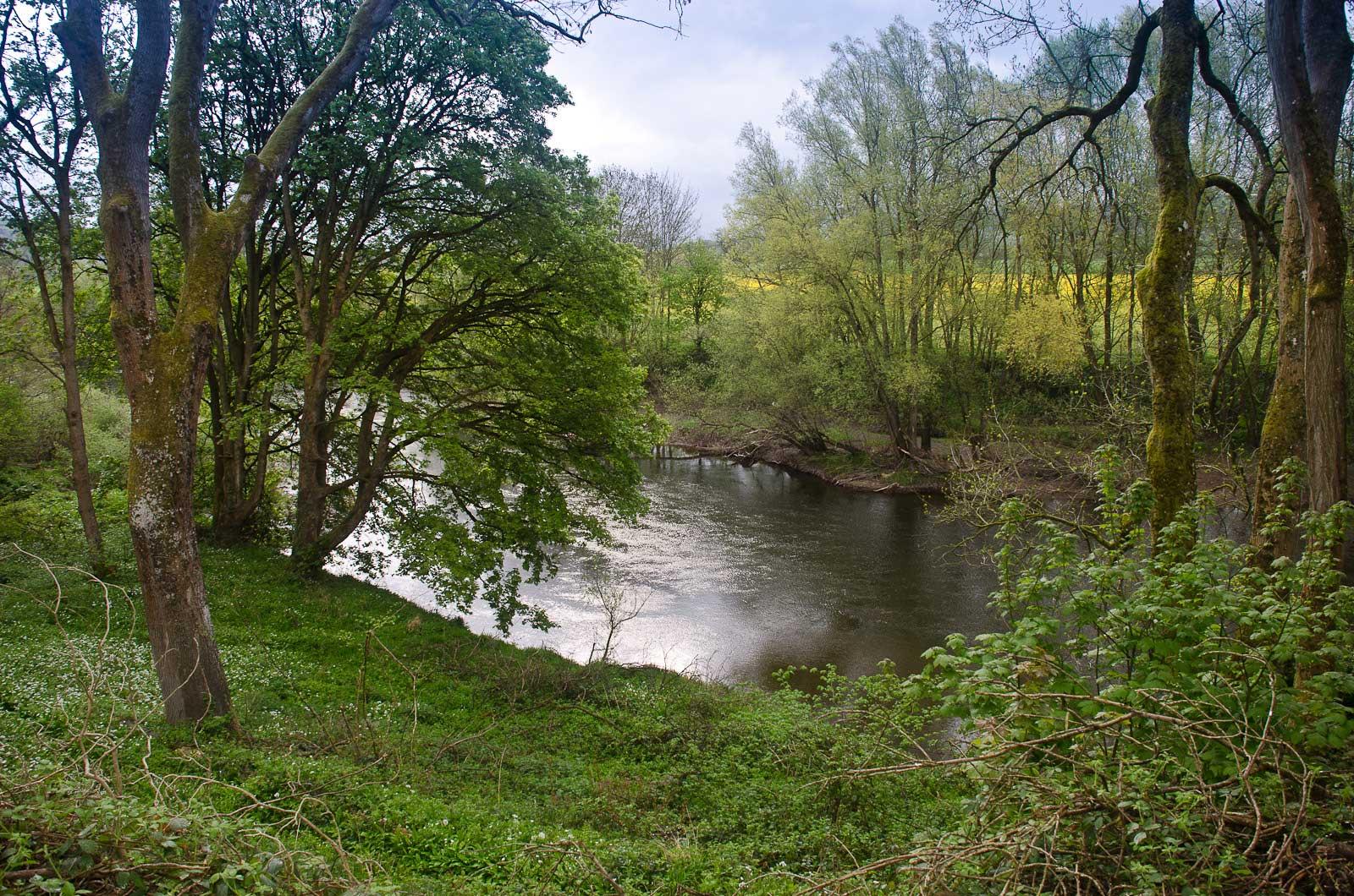 river-view.jpg