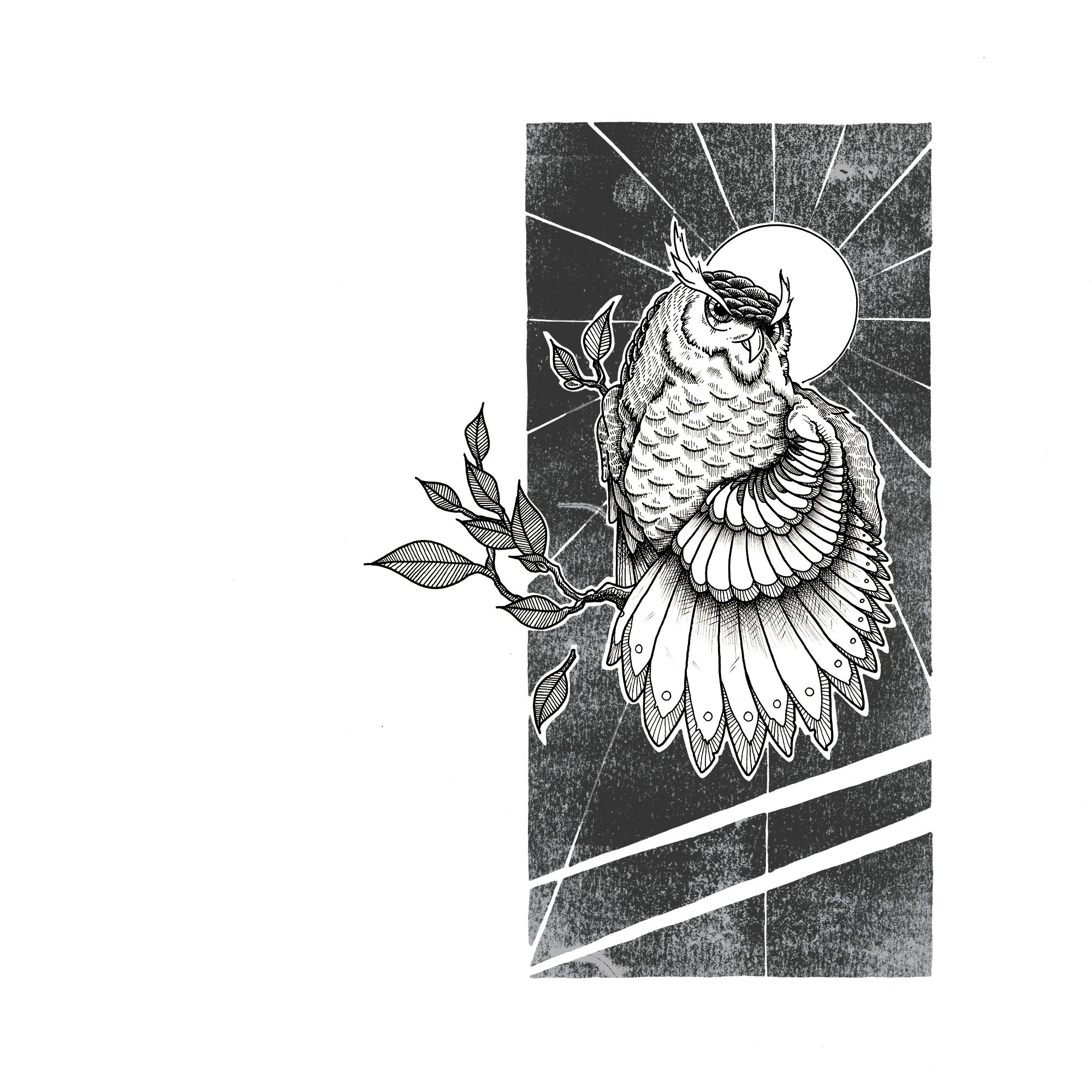 Owl2-ig.png
