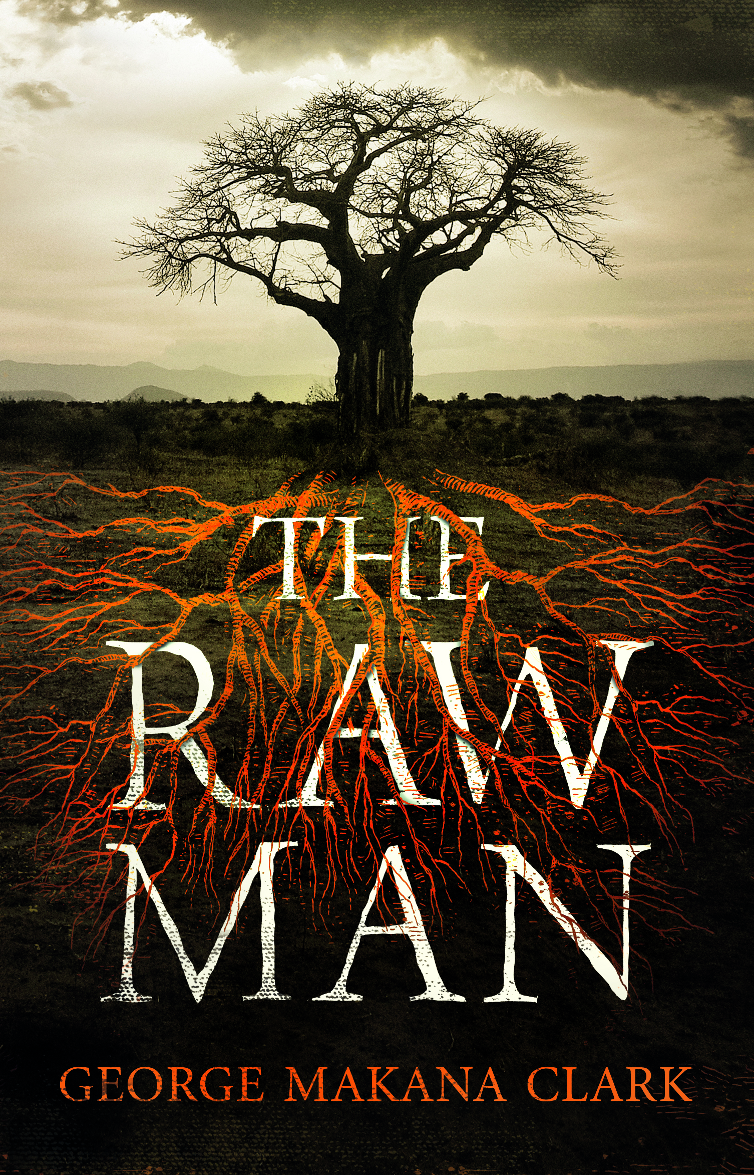 THE RAW MAN  Literary fiction, 330 pages Jonathan Cape Ltd     A remarkable, revelatory debut set in Southern Africa, where a young man who has the gift, or curse, of being a 'blood reader', struggles to unravel his family's secrets and grapples with his own troubled past. In sections oscillating between the material and spiritual worlds we learn Sergeant Gordon's story in reverse, from the military in the Rhodesian Bush War, to adolescent rebellion, the brutal initiations of youth, back to childhood, birth and ancestry.     'An extraordinary novel, and  a work of rare conception, bringing together, within one individual,  the painfully conflicted history of southern Africa.' -- Brian Chikwava, author of HARARE NORTH