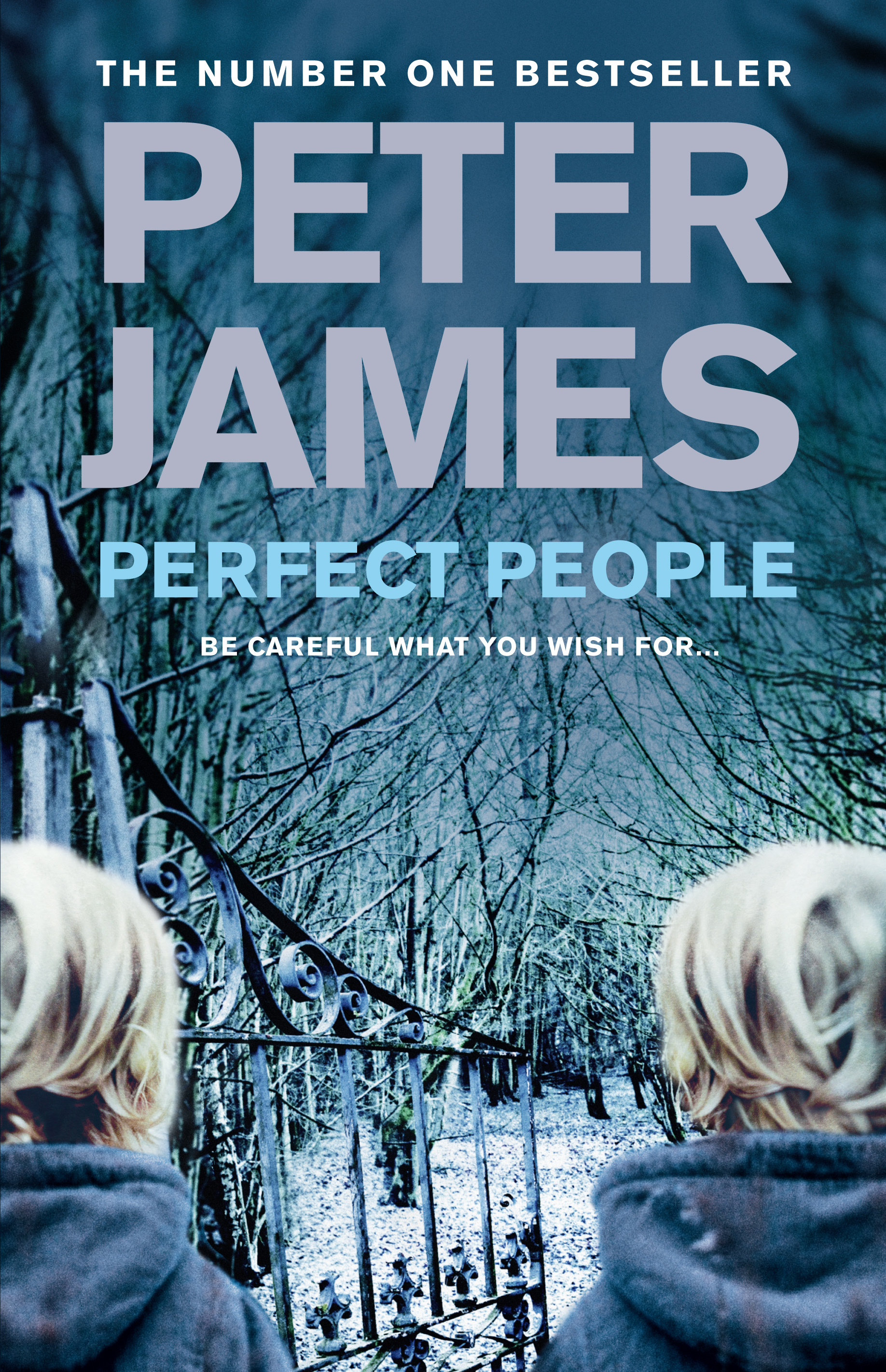 JAMES - PERFECT PEOPLE Macmillan cover.jpg