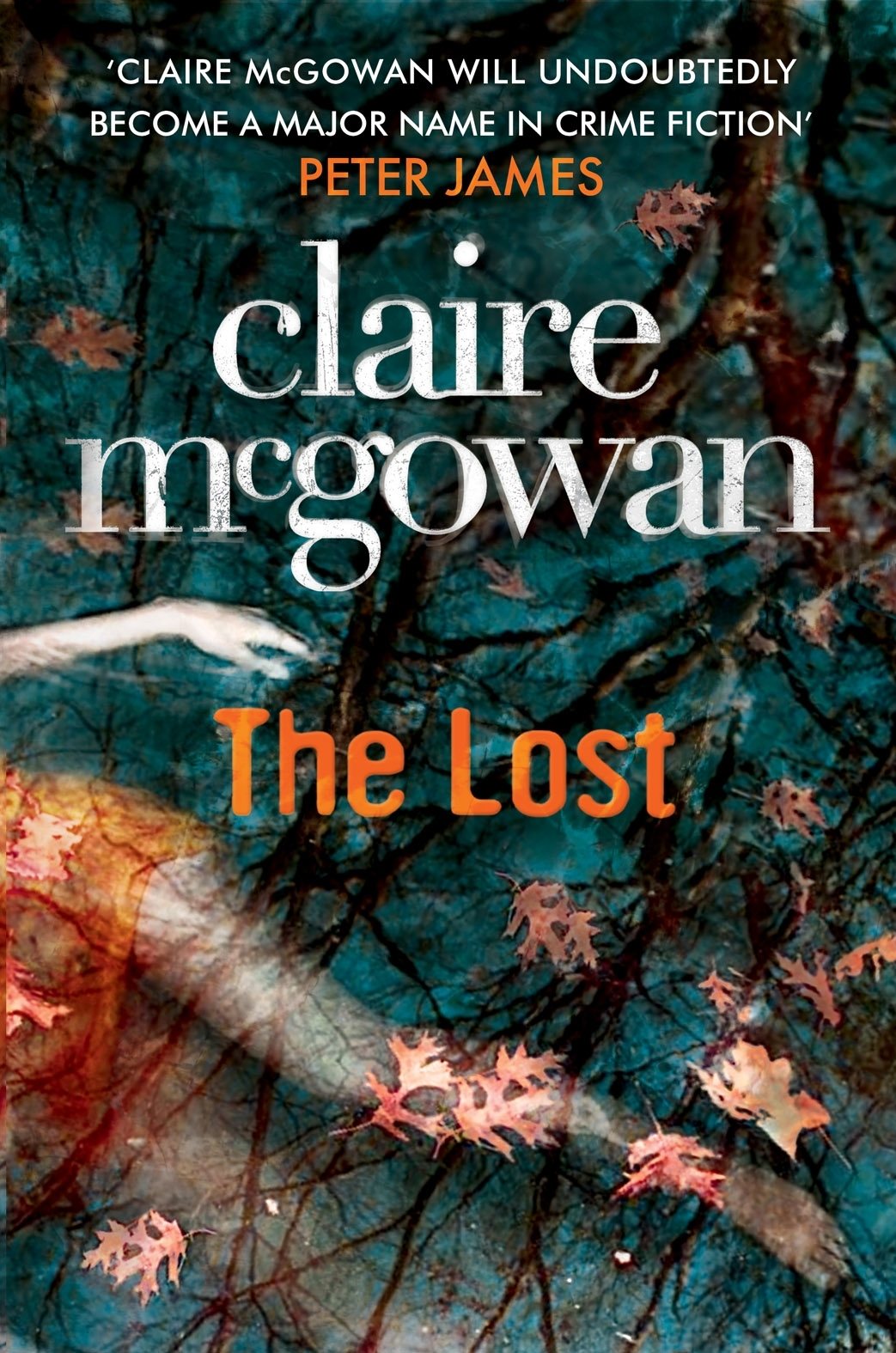 MCGOWAN - THE LOST UK cover.JPG
