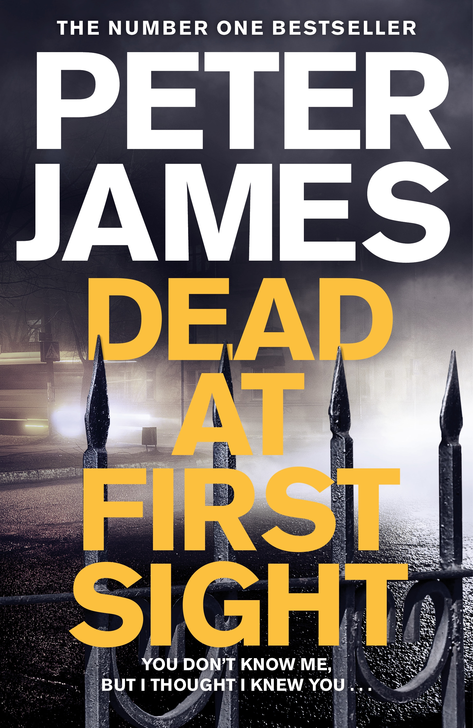 DEAD AT FIRST SIGHT cover final.jpg