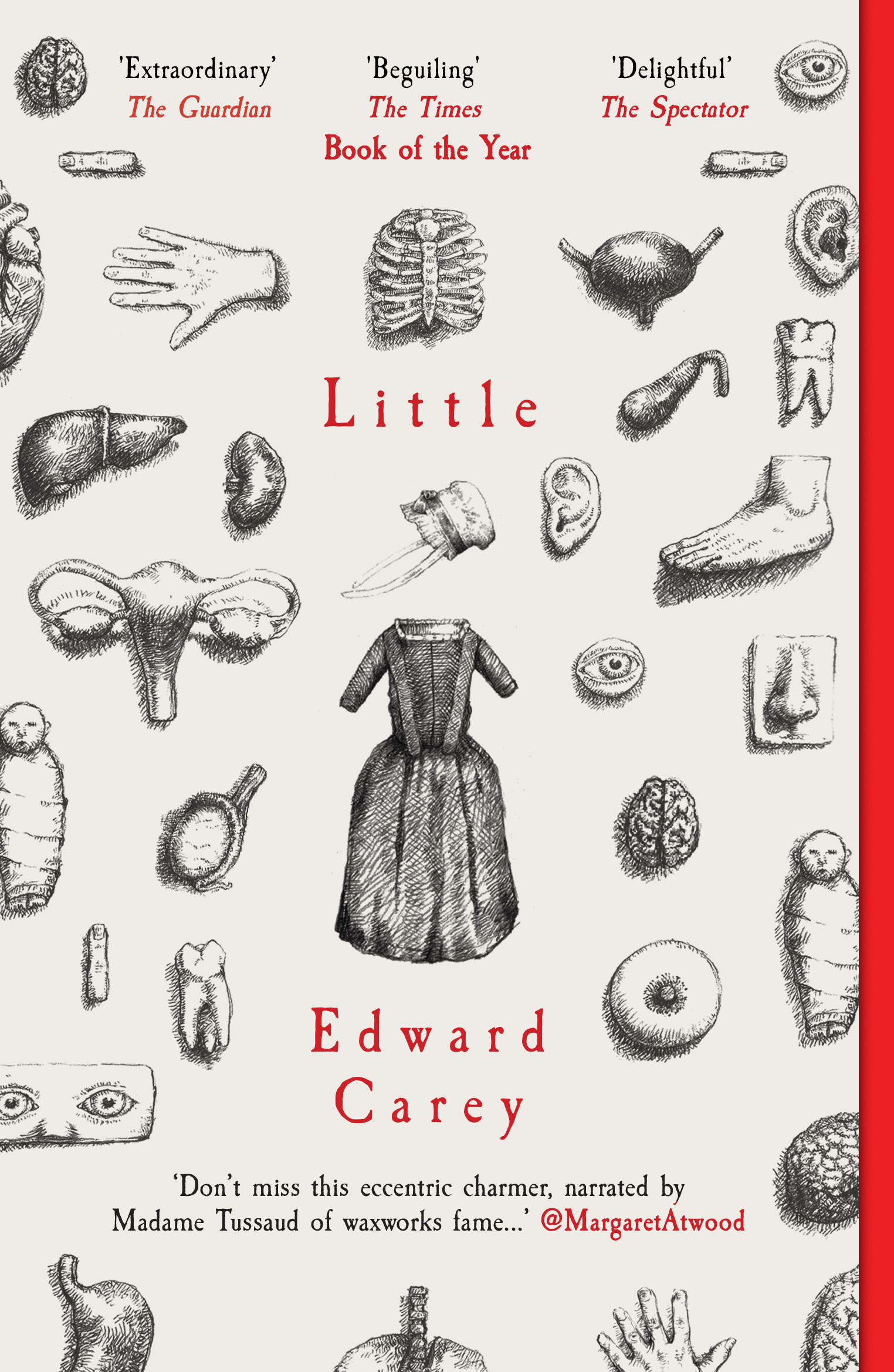 LITTLE by Edward Carey - PB cover.jpg