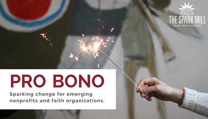 Pro Bono: Sparking change for emerging nonprofits and organizations.