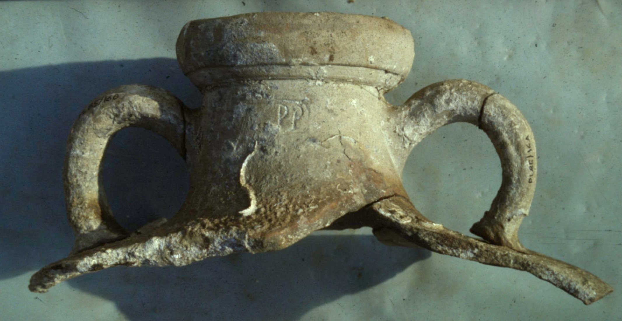 An Africano Grande amphora with the stamp ending PP visible on the neck.