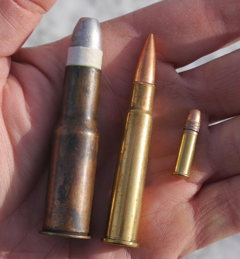 Catridges compared: .577/450 Martini-Henry, .303 British and .22 LR.