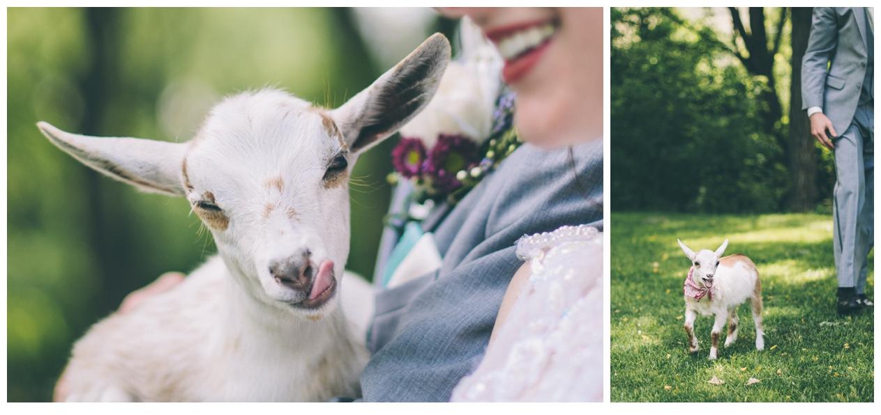 027-AmandaKoppImages-Colorado-Farm-Wedding-Photo.jpg
