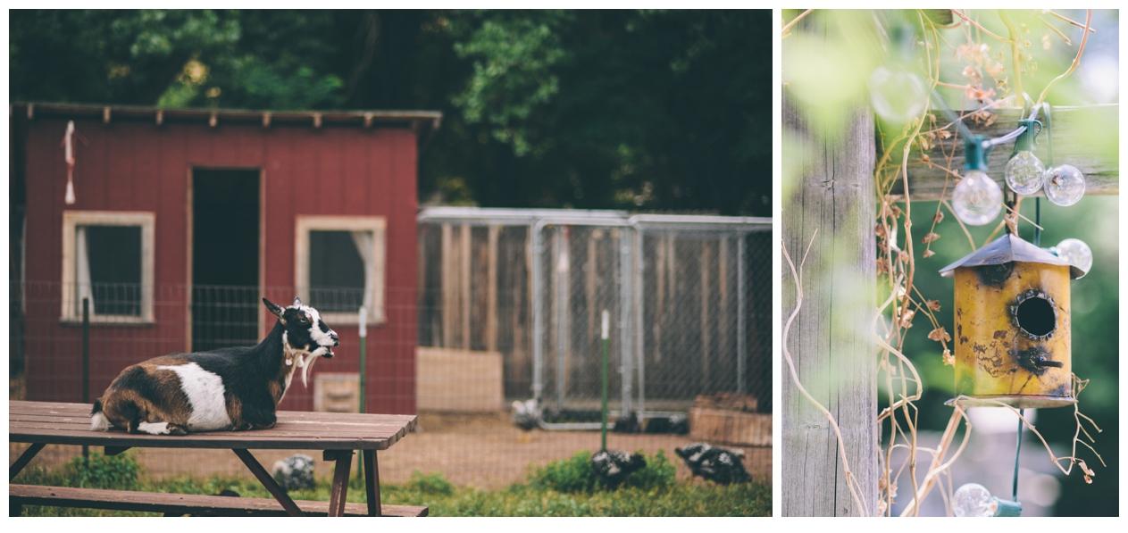 088-AmandaKoppImages-Colorado-Farm-Wedding-Photo.jpg