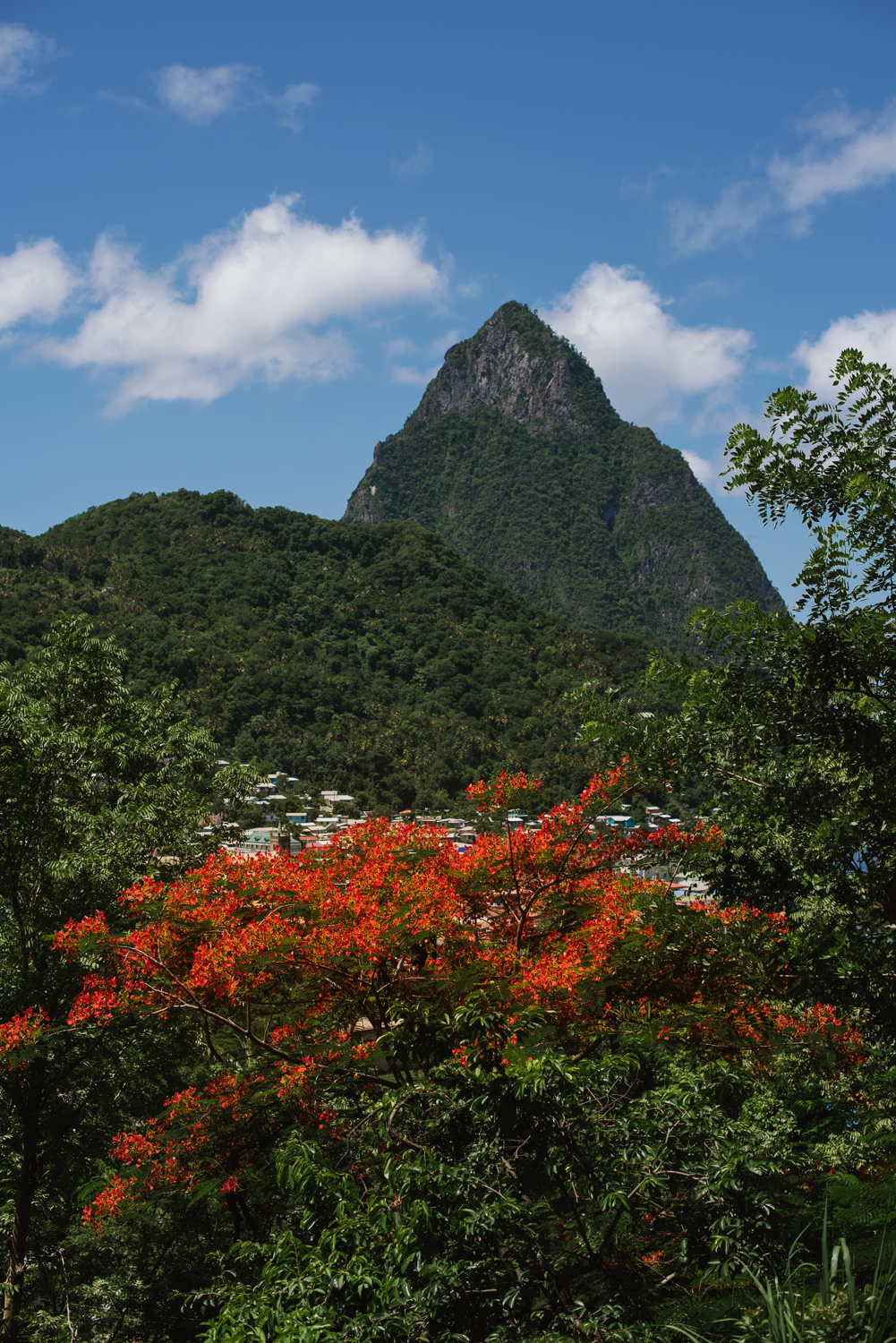St.Lucia-Wedding-21.jpg