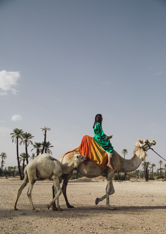 Morocco destination wedding photo-95.jpg