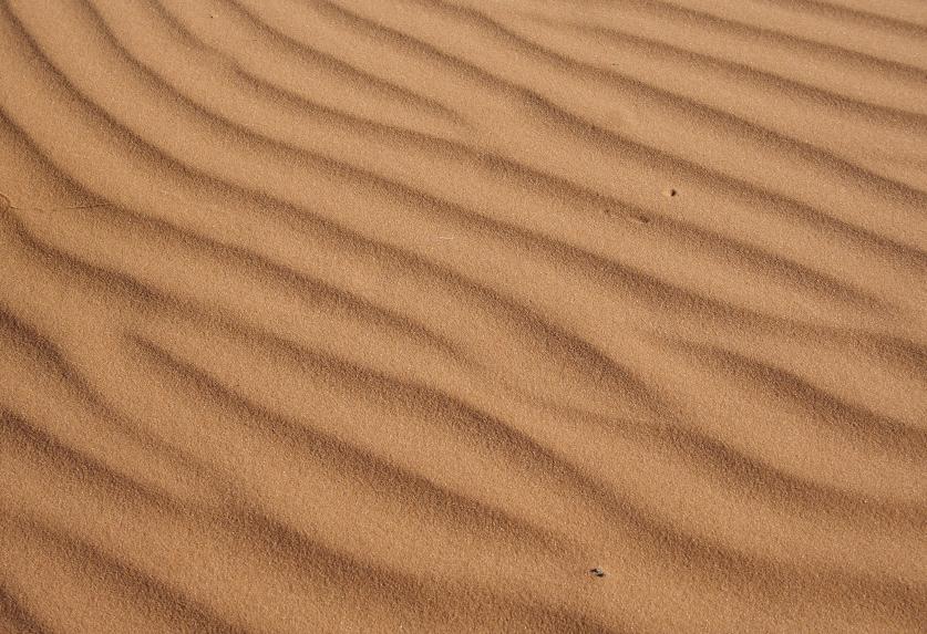 DuneSmall.jpg