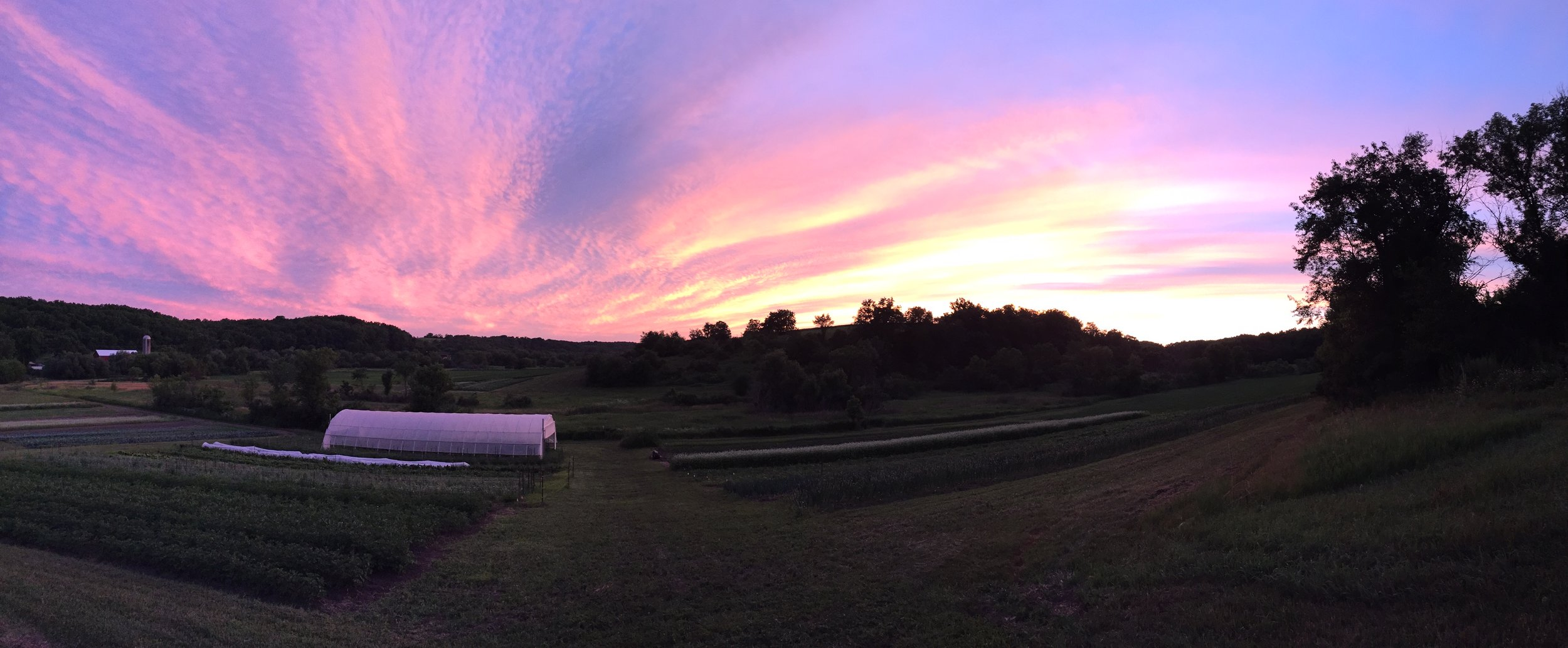Sunset on the farm
