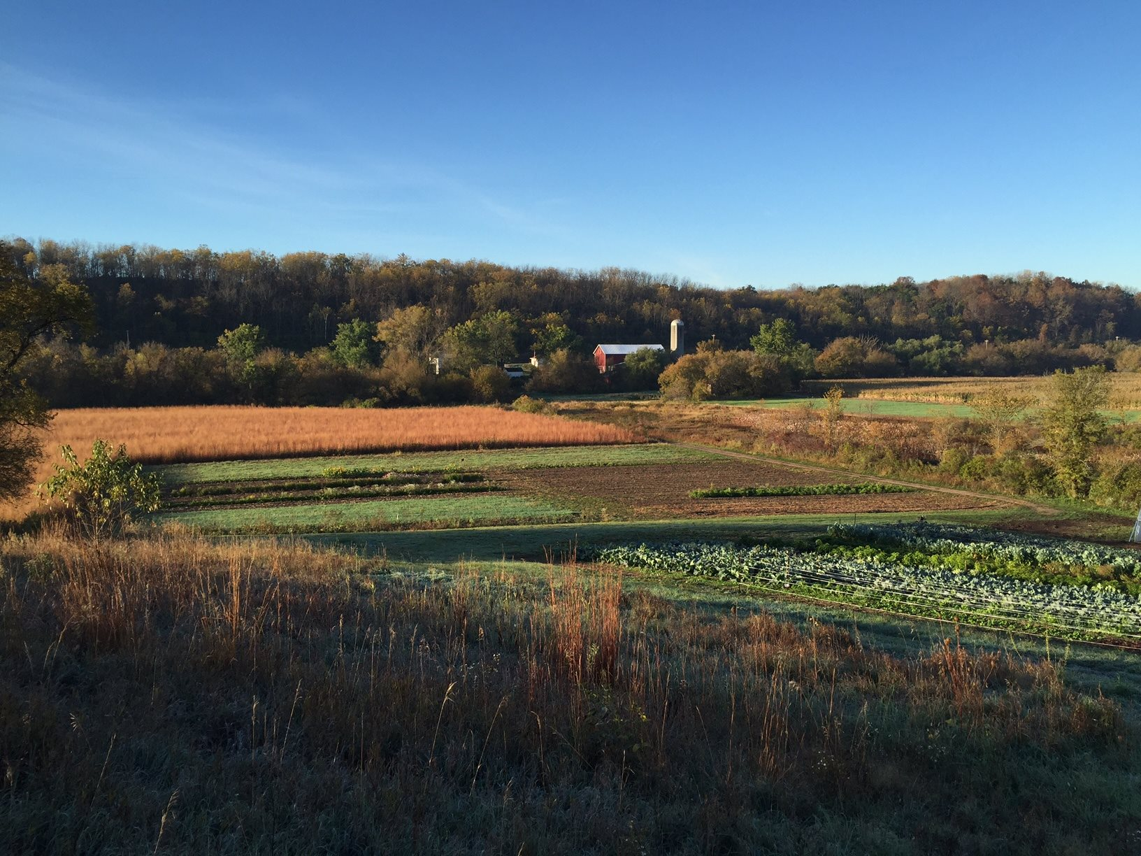 Some of the diversity on the farm - the prairie remnant and restored prairie, produce fields, and wetland