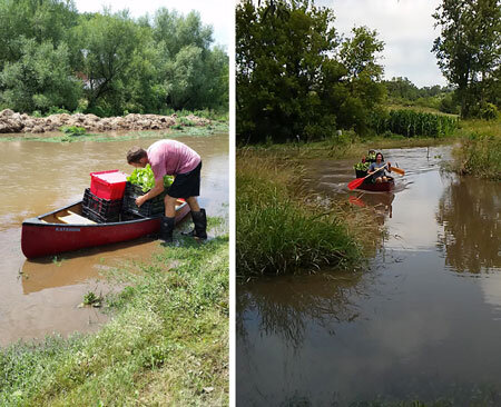 After a brief portage, we reloaded the canoe with bins of vegetables and paddled across the normally walkable path back to the barn.