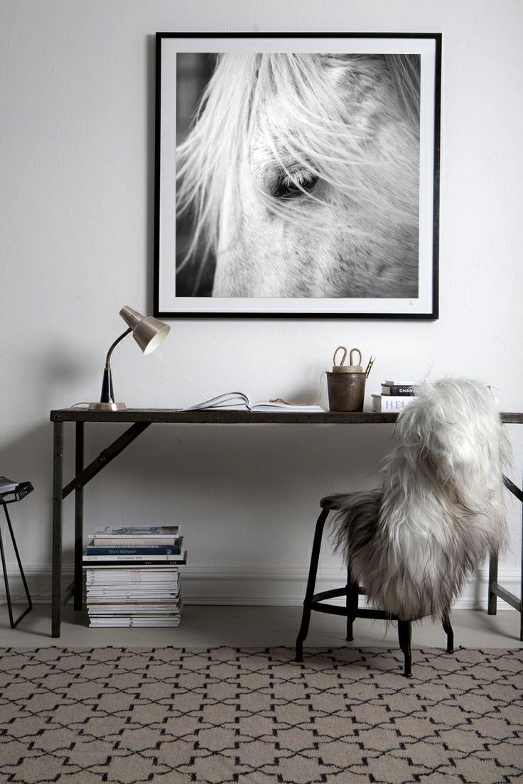 Horse-photo-framed-in-wall.jpg