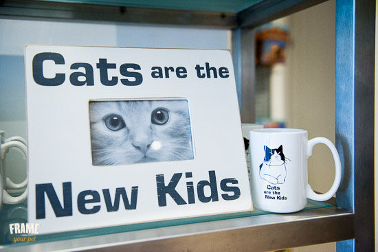 cats-are-the-new-kids-accessories