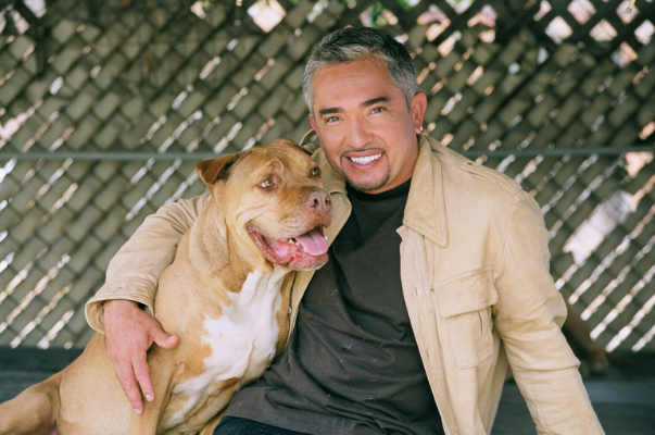 Famous Cesar Millan, also known as the Dog Whisper.