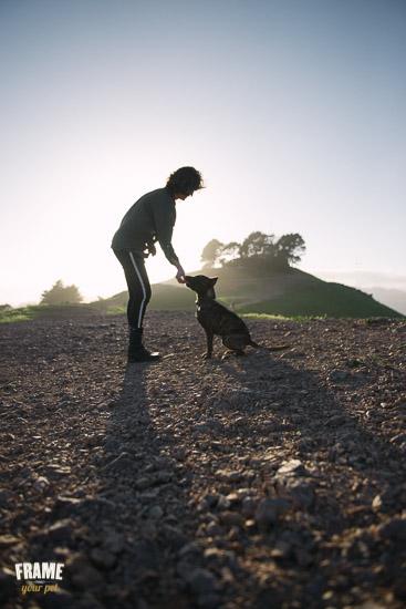 bond-between-dog-and-owner-against-sunset.jpg