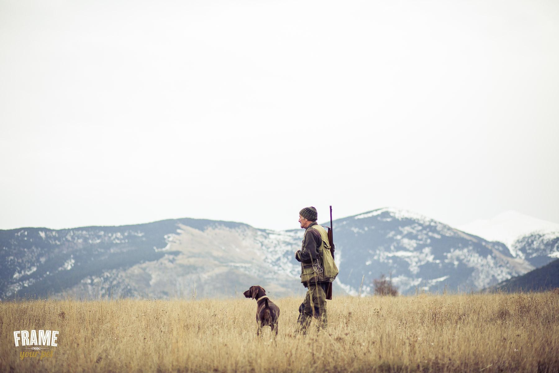 modern-dog-photographer-los-angeles-37