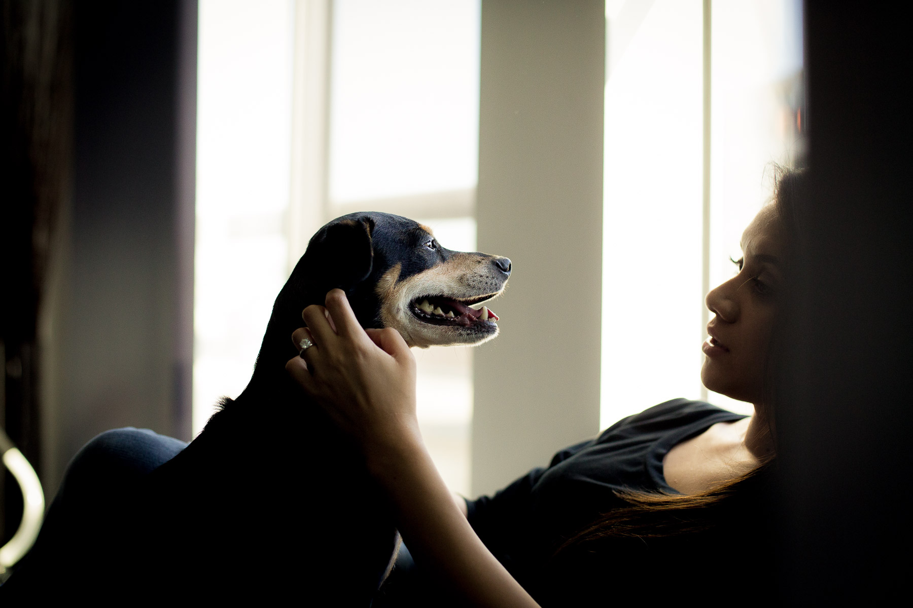 animal-and-owner-bonding
