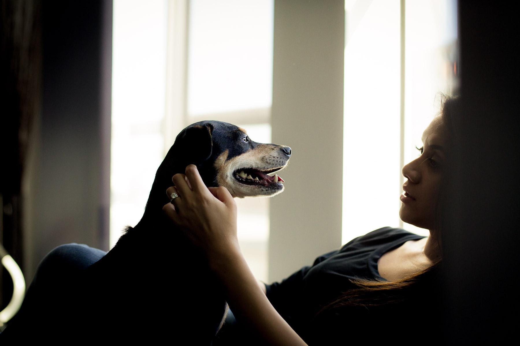 los-angeles-moder-dog-photographer-santa-monica.jpg