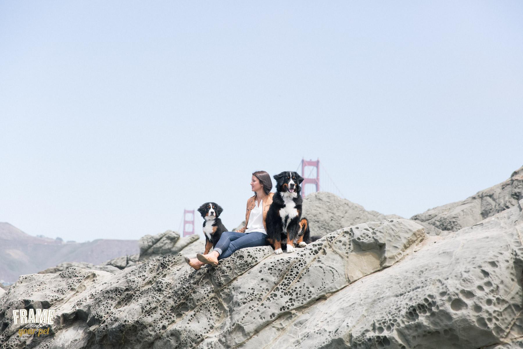 family-portrait-photographer-with-pets-san-francisco.jpg
