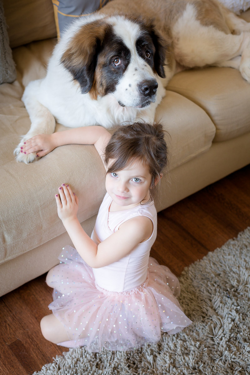 Modern-dog-photographer-3.jpg
