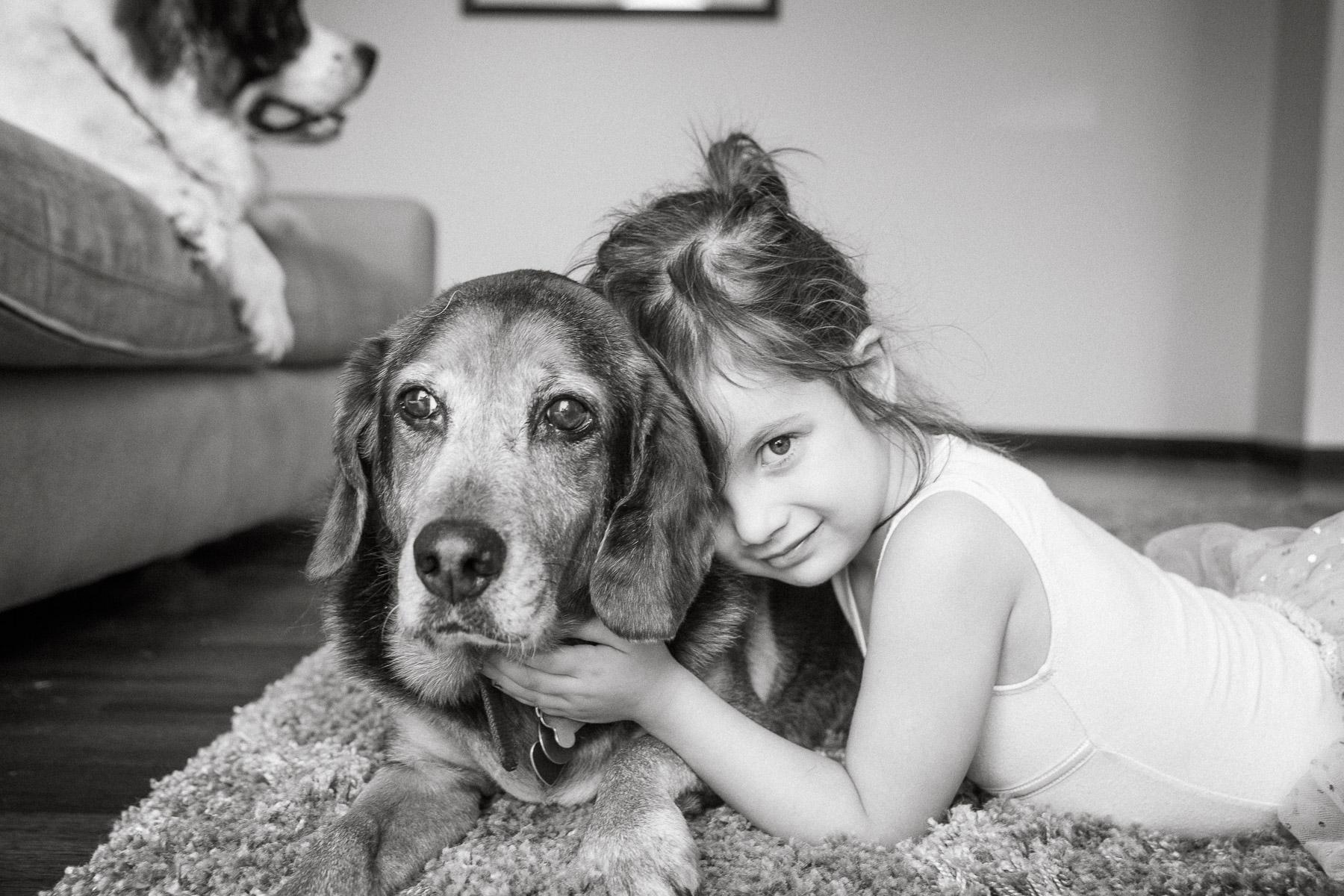 Modern-pet-photography-los-angeles.jpg