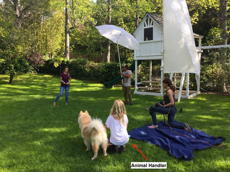 animal-handler-on-set-natural-balance